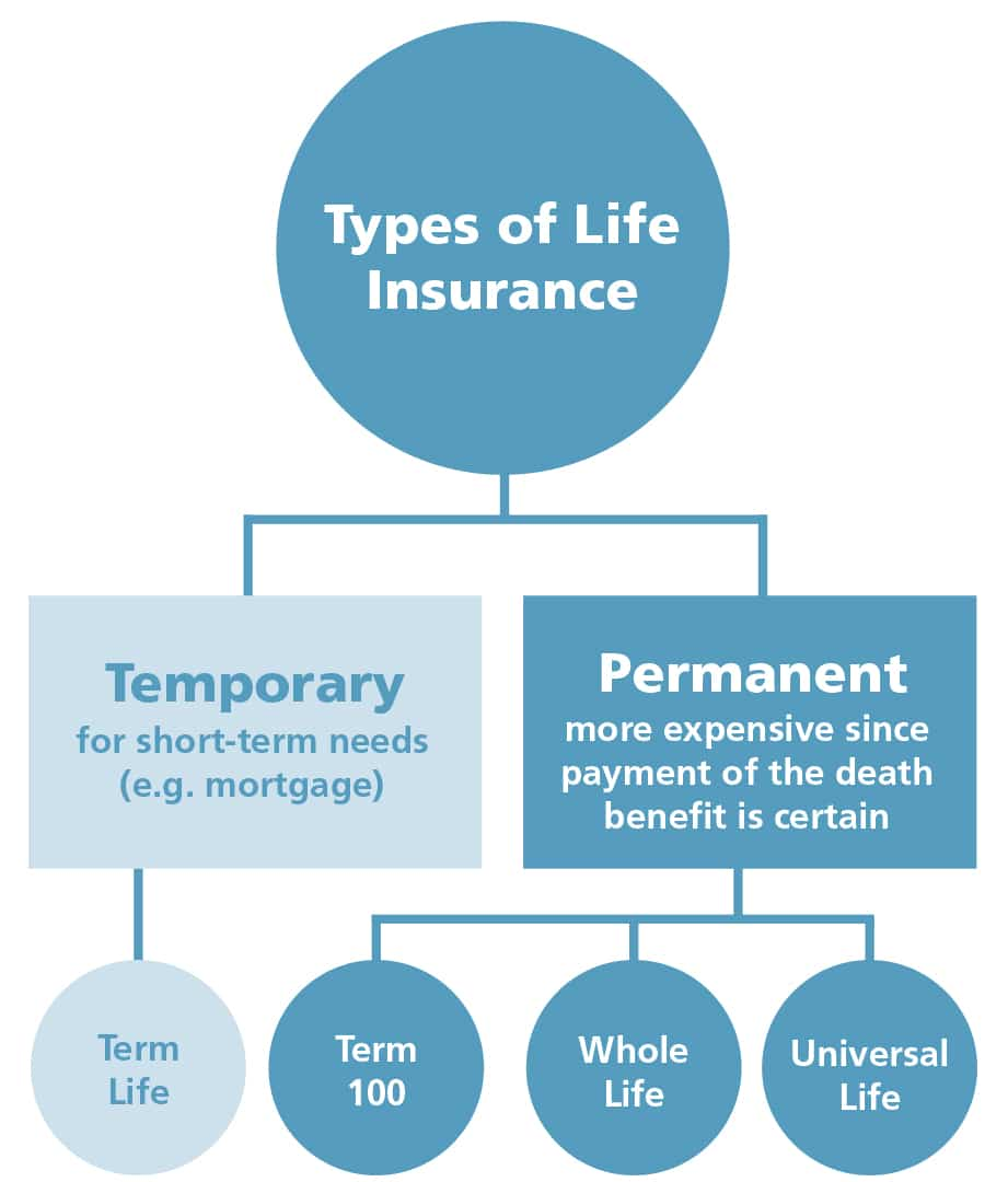 The Facts of Life Insurance: What You Need to Know