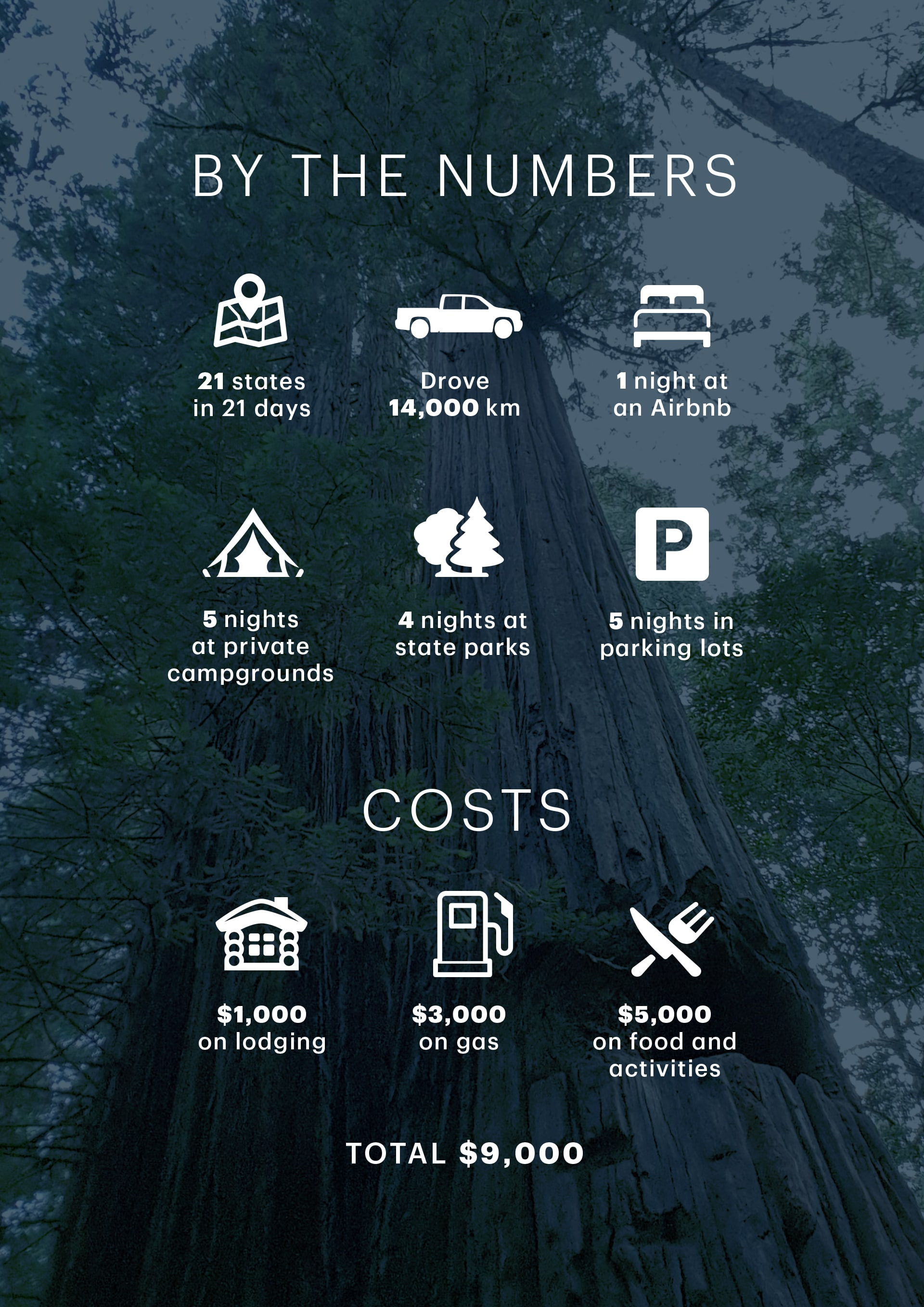 Honeymoon Road Trip - Infographic