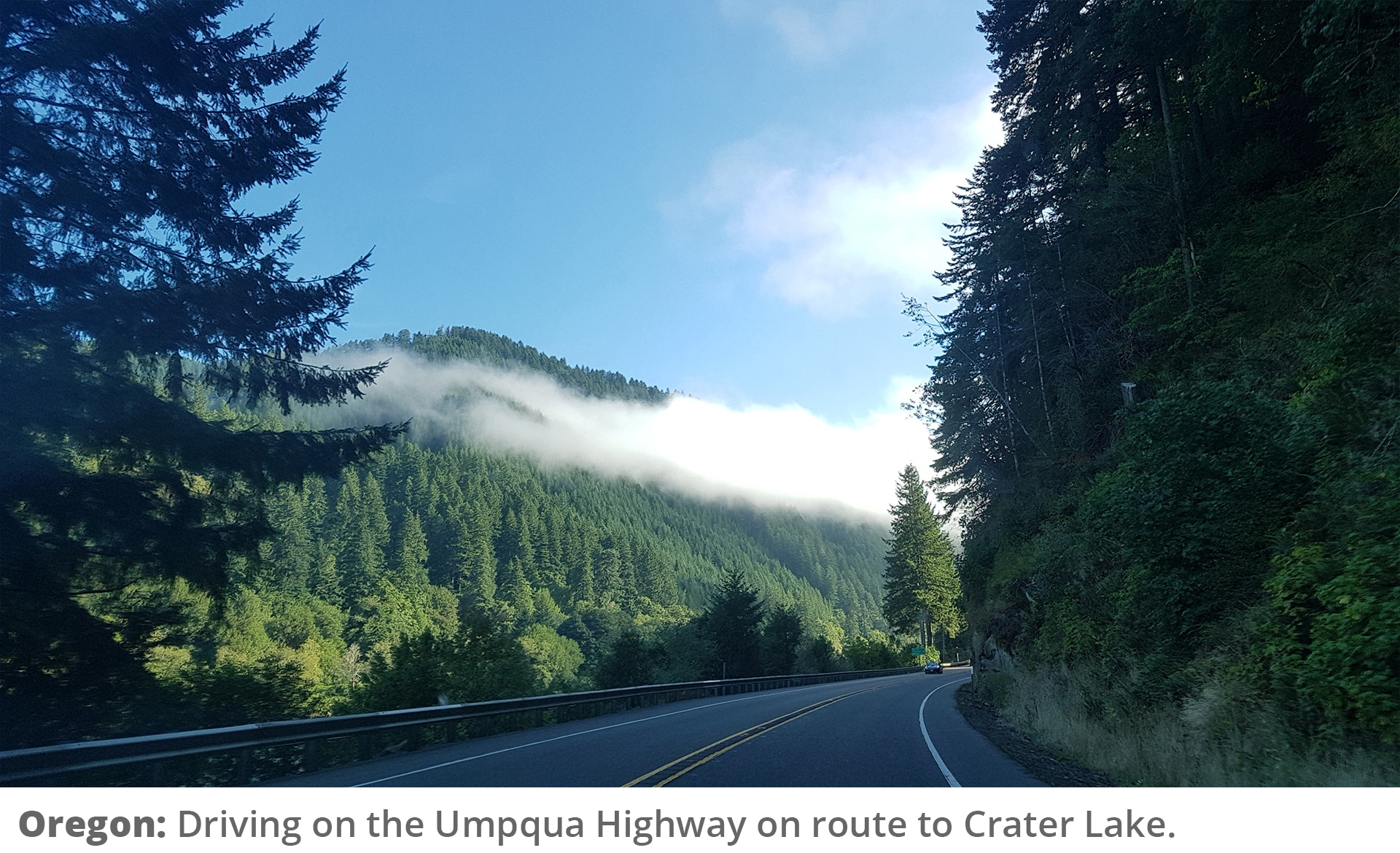 Honeymoon Road Trip - Driving on the Umpqua Highway