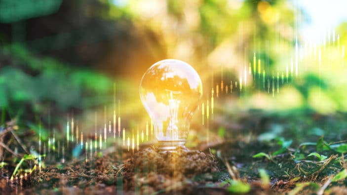 Investing in the next decade: The future is green
